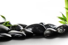 Скинали бамбук и черные камни