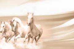 Скинали бегущие лошади на бежевом фоне