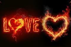 Скинали цветы в огне, LOVE
